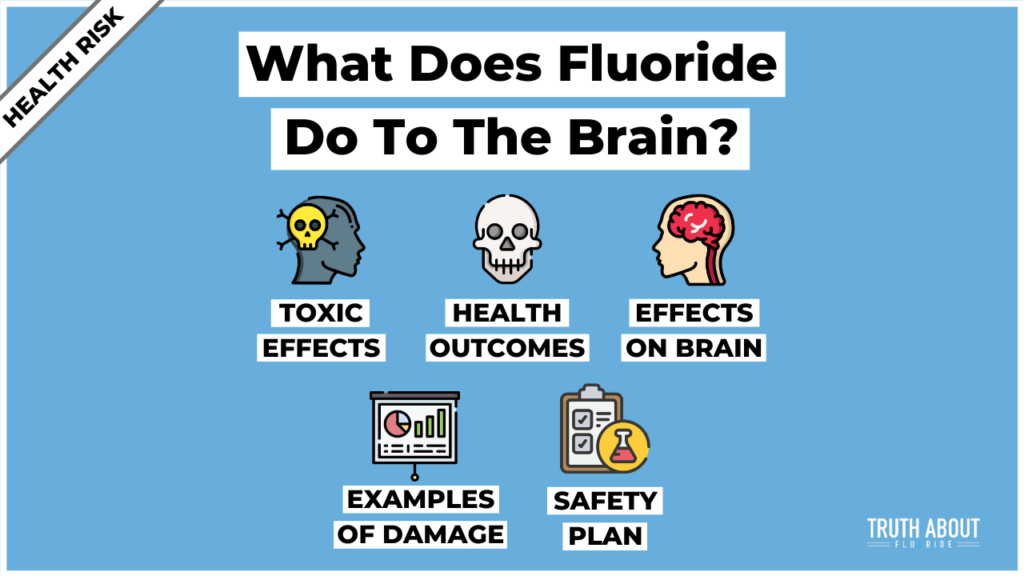 What Does Fluoride Do To The Brain?