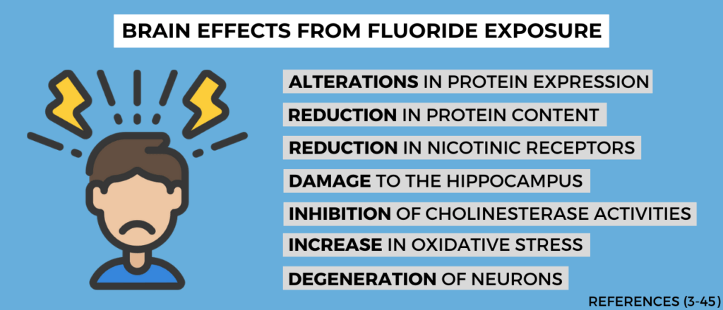 brain effects from fluoride exposure