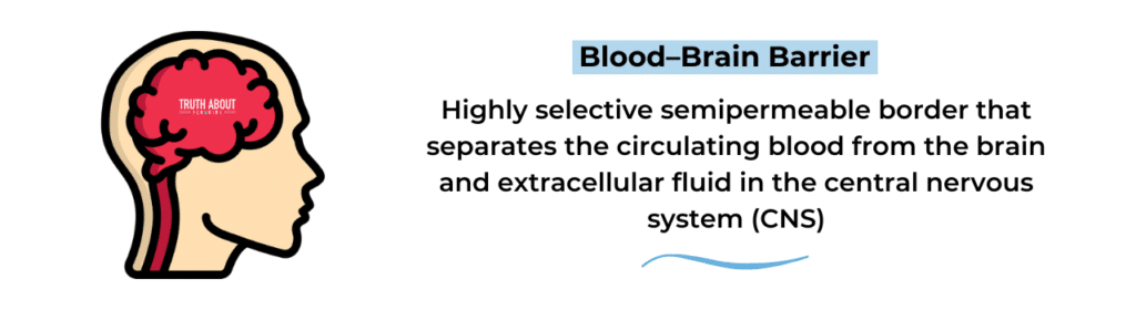 blood brain barrier fluoride