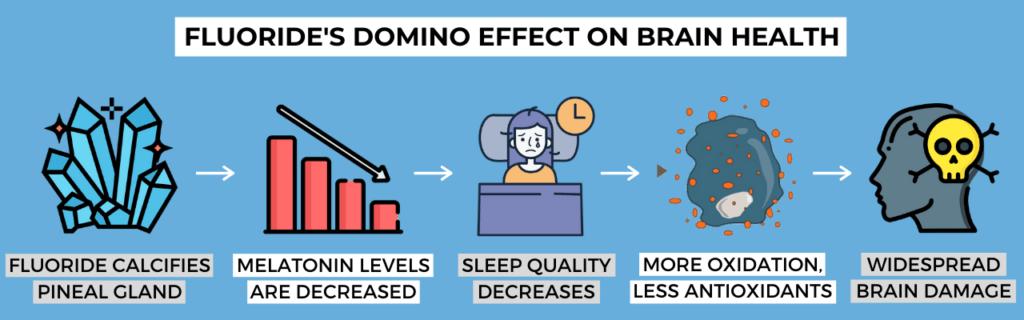 fluoride's domino effect on brain health illustration