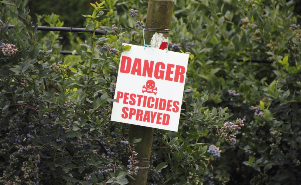 danger, pesticides sprayed on plant sign